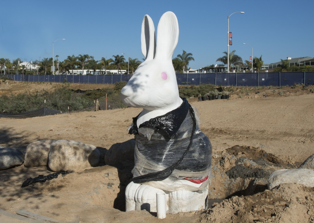 The first rabbit to be installed on the new civic center grounds. — Photo by Charles Weinberg