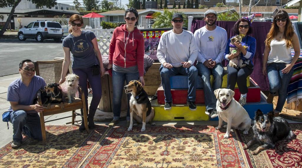 Pet Groomer Newport Beach