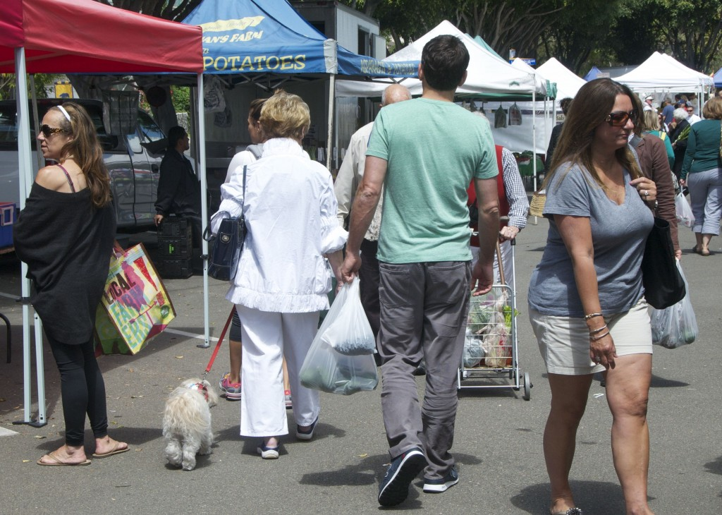A dog at the CdM Farmers Market in summer, 2012