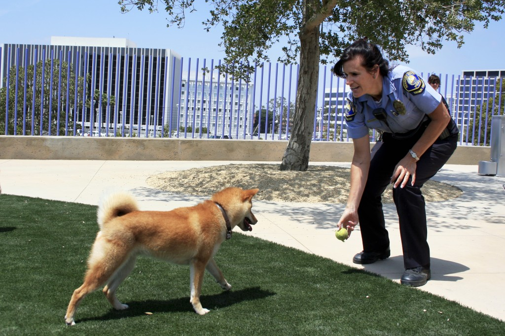 Animal Control Officer Valerie Schomburg tosses a tennis ball for Raegan at the new dog park on Saturday. Schomburg.and another animal control officer were on hand at the park to asnwer questions and introduce residents to the dog park. — Photo by Sara Hall
