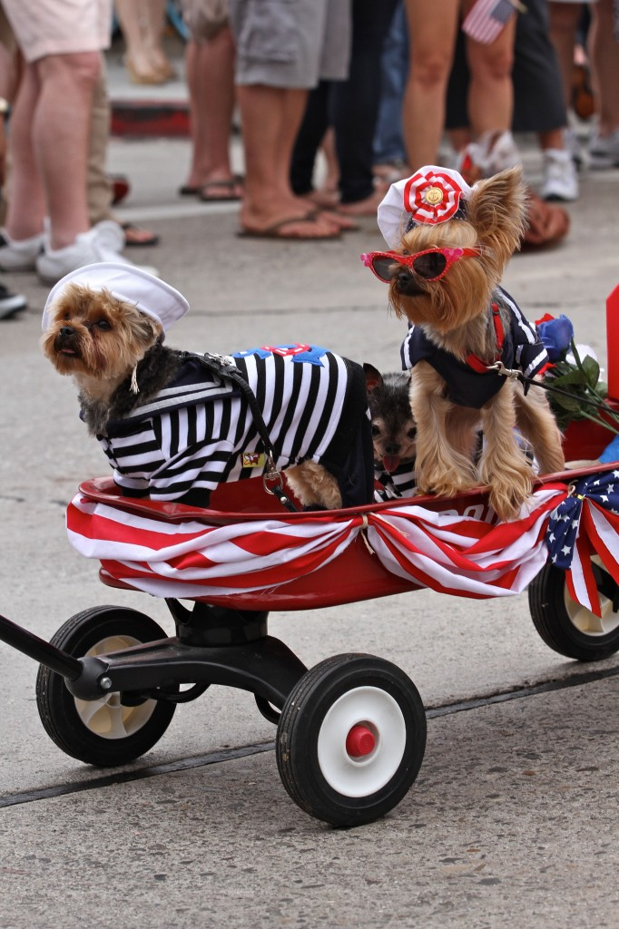 patroit parade dogs1_Jim