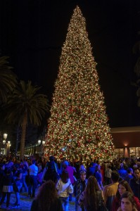 The 90-foot fir is lit up in the Neiman Marcus-Bloomingdale's Courtyard as spectators enjoy the festivities.