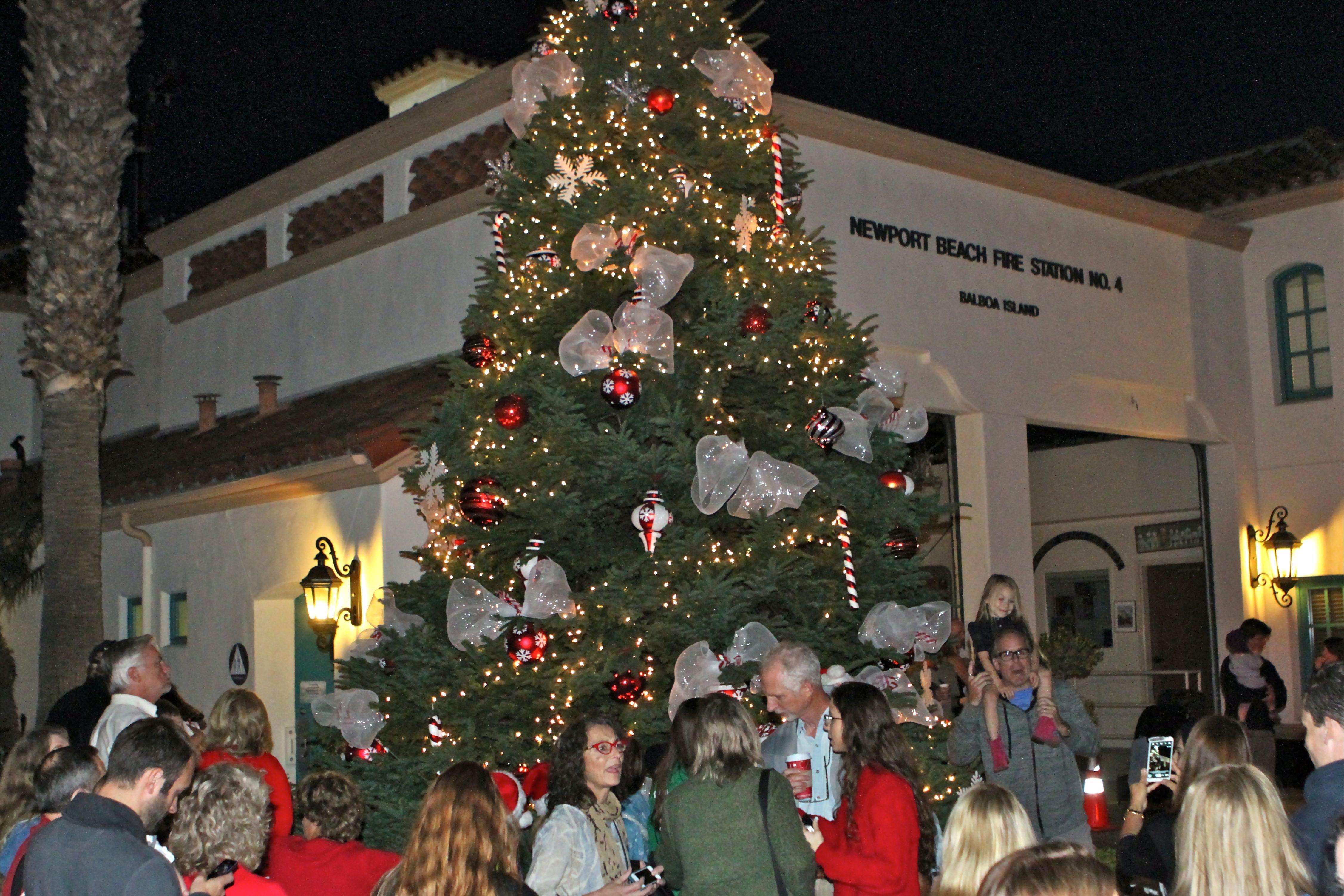 Island Christmas Tree.Balboa Island Tree Lighting Newport Beach News