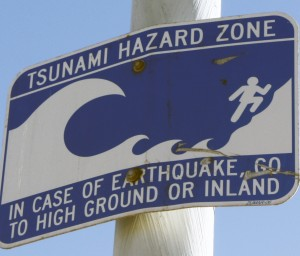 Tsunami sign in Newport Beach