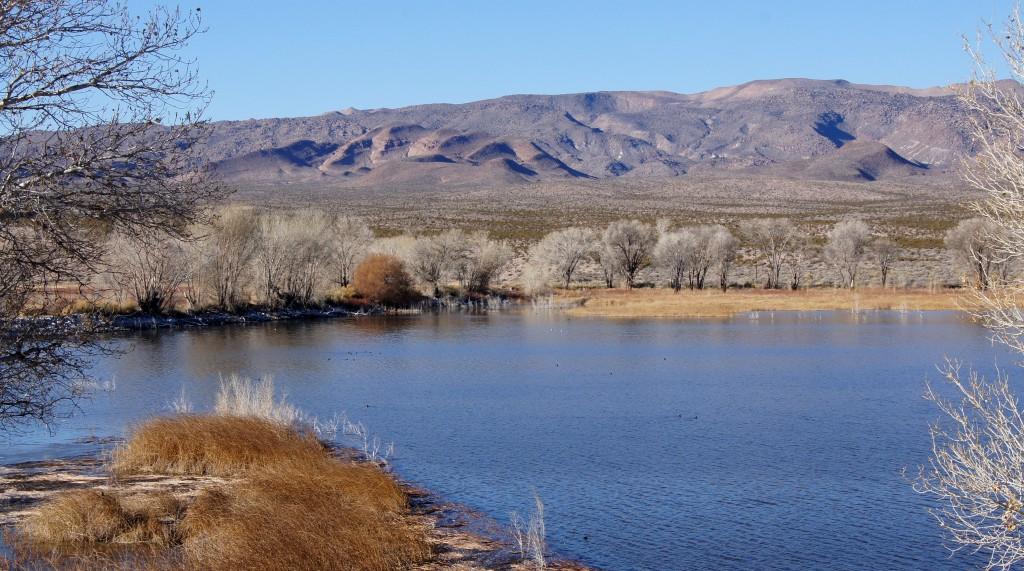 Pahranagat Spring Lakes