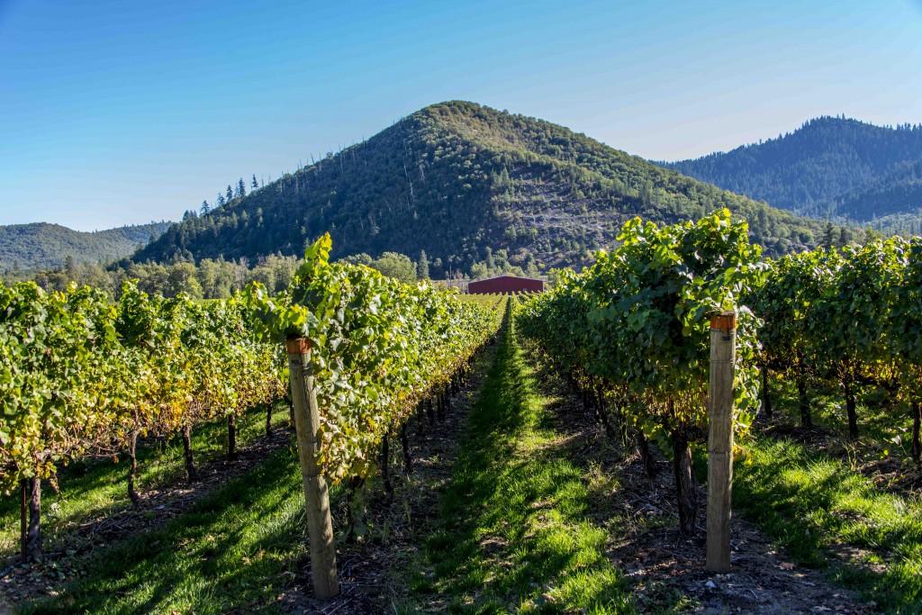 Del Rio Winery-9