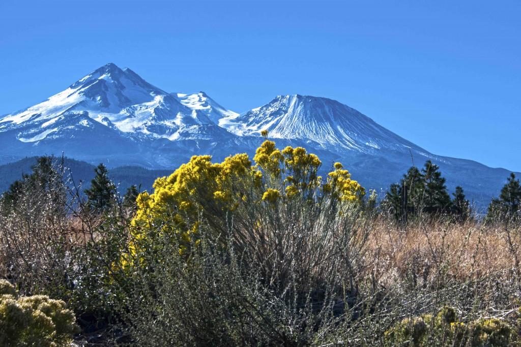 Mt Shasta-25-Edit