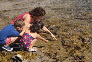 Jennifer Keefe with daughter Genavieve, 4 and son Cullen, 5, from Newport Beach, at Little Corona tide pools. / photos by Richard Simon