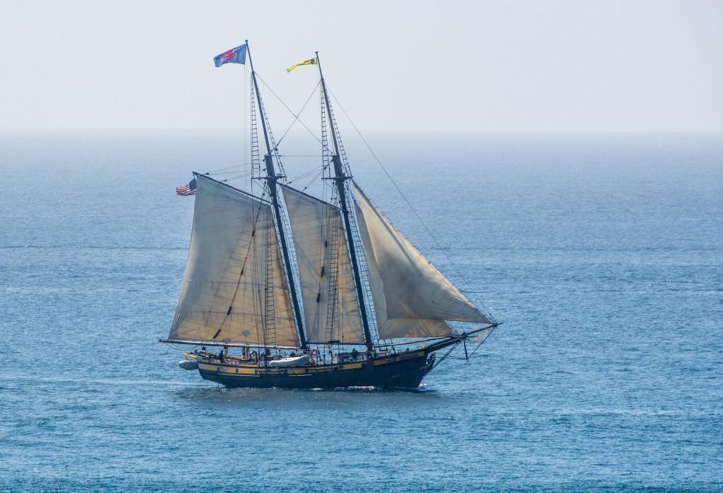 The Pilgrim Sailing