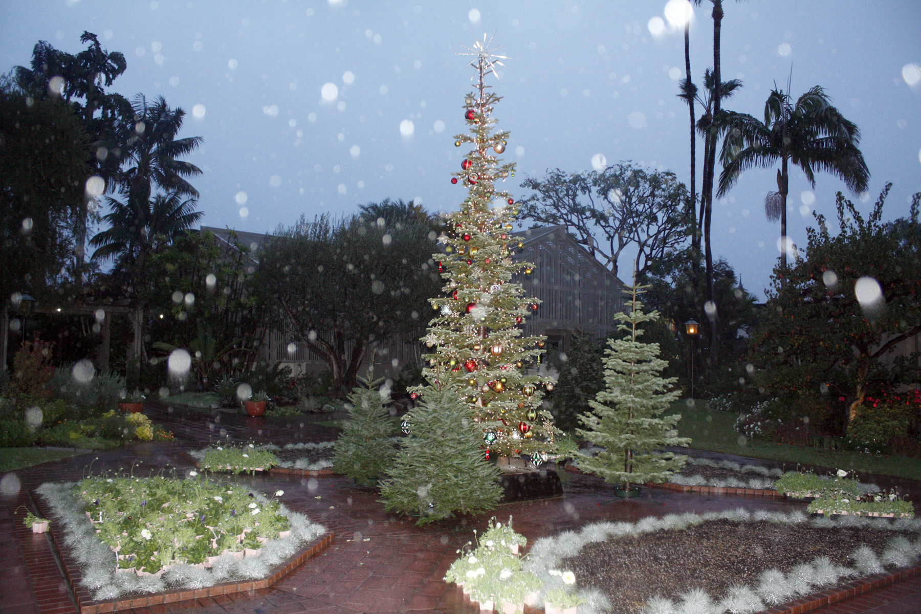 Newport Local News Nights Of A Thousand Lights At Sherman Gardens Dec 12 13 Newport Local News