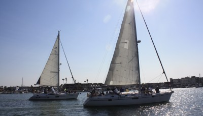 Sailboats in Newport Harbor