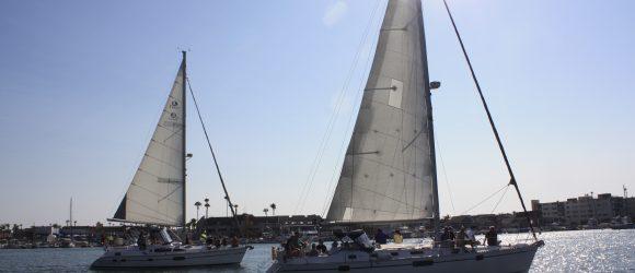 Sailboats in Newport Harbor