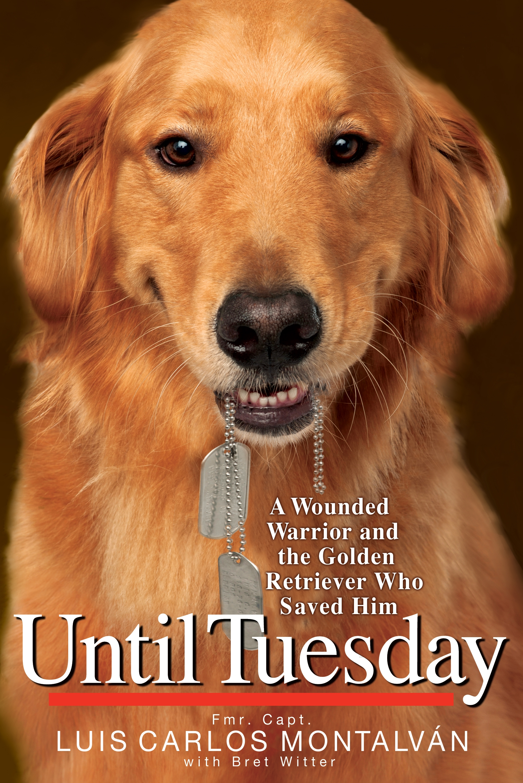 Soldier dog ebook best deal gallery free ebooks and more newport beach local news under cover soldier and canine profiled in those of you who read fandeluxe Choice Image