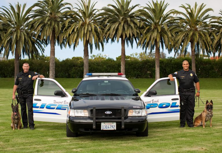 NBPD Canines Elko and Jardo Ready to Retire