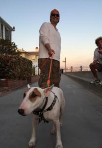 Matthew Tacov and his English Bull Dog, Chutzpuh