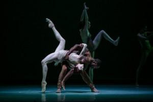 dance LINES 7  - Biophony, Photo by Quinn B Wharton