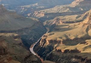 grand canyon crop