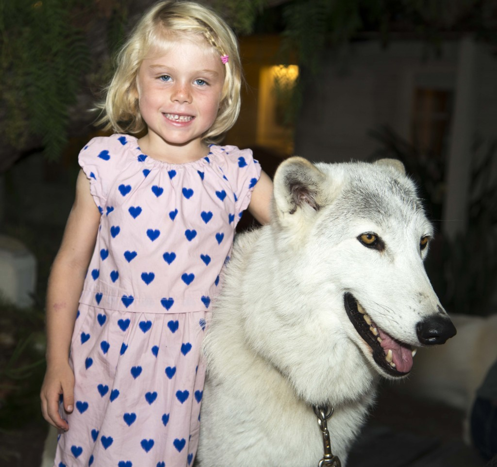 Julia Gershons, 5, with Demu the wolf. — Photo by Lawrence Sherwin ©