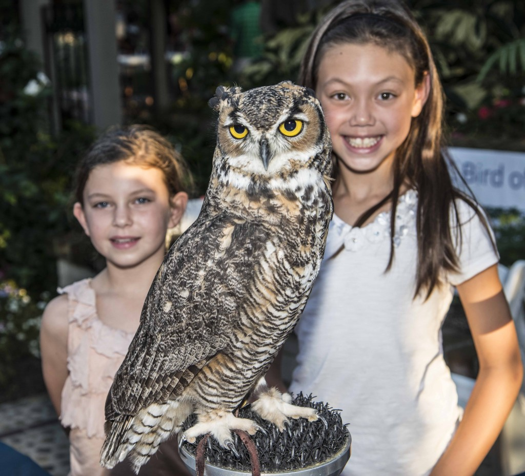 Juliana Yoon and Haven Hodge with an owl. — Photo by Lawrence Sherwin ©