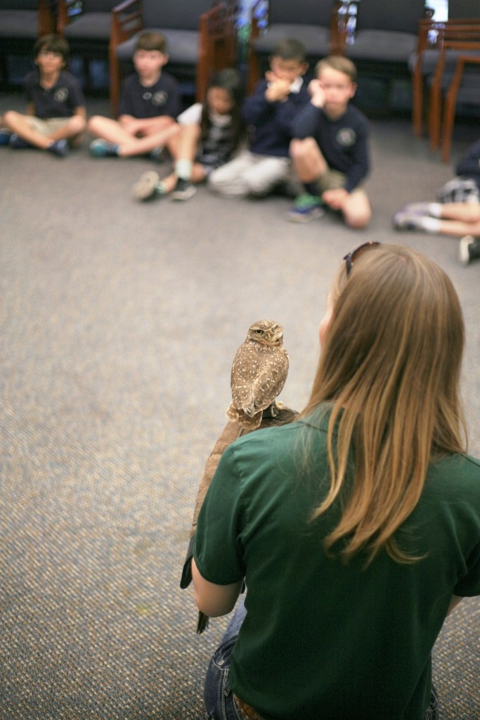 Inside the Outdoors Program Naturalist Hailey Quirk talks to first graders at Harbor Day School during the Traveling Scientist program on Friday about birds of prey, including Spartacus, a rescued burrowing owl who lost his eye. — Photos by Sara Hall ©