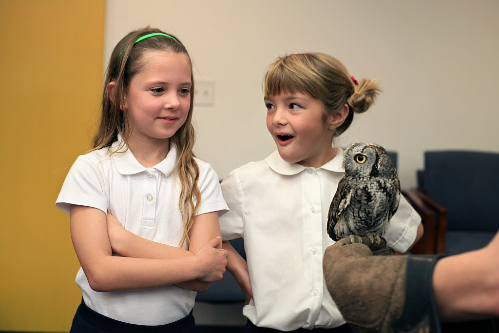 Harbor Day first graders Sheridan Hofer, 6, and Kaitlyn Dostert, 7, meet Gus, a Western screech owl, when the Traveling Scientist visited the school on Friday. — Photos by Sara Hall ©