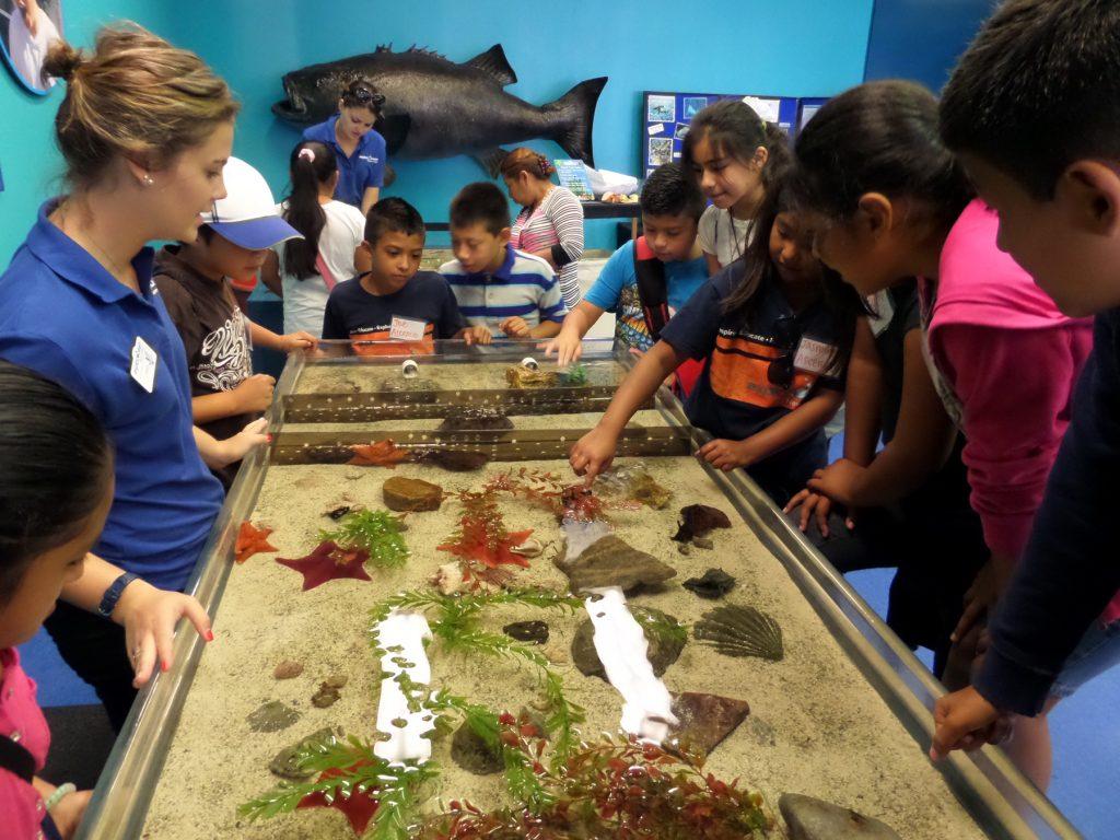 Science program at ExplorOcean. — NB File photo ©