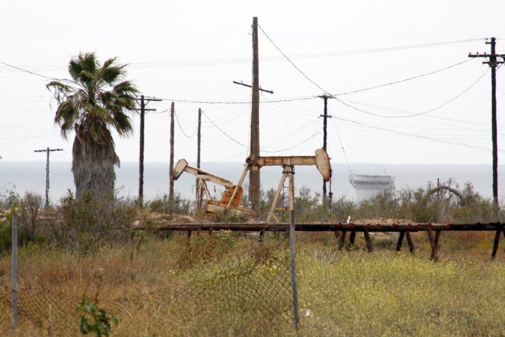 Wild vegetation and oil operations both currently take up the space on Banning Ranch. — Photo by Christopher Trela ©