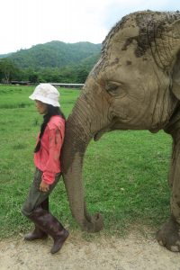 Save Elephant Foundation's founder Lek Chailert