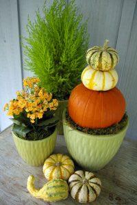 pumpkin-gourd-topiary-3