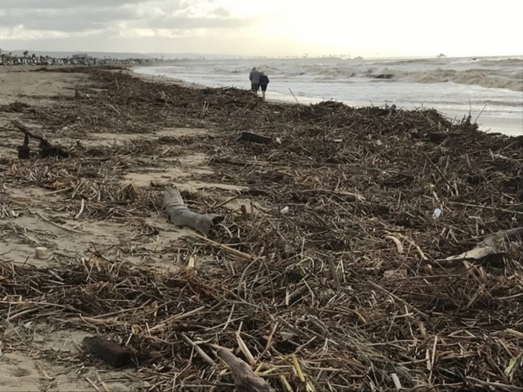 A couple walks on the beach near some washed up debris from the storm last weekend. — Photo courtesy Newport Beach Municipal Operations Department ©