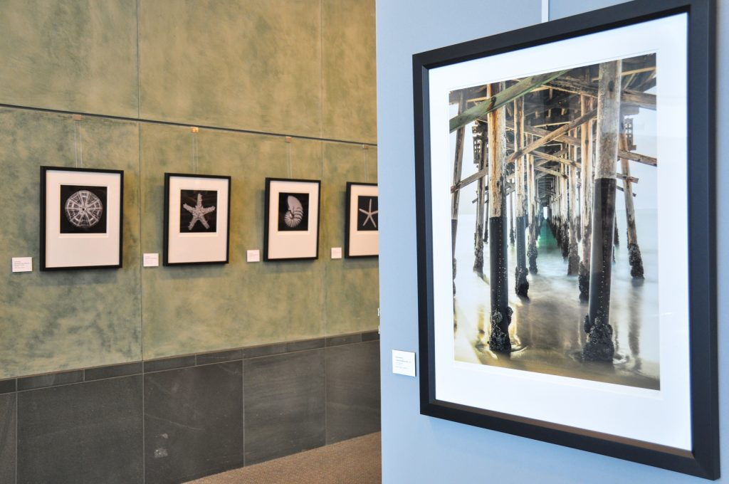 Display of Scott Amling's photography in the Central Library. — NB Indy file photo