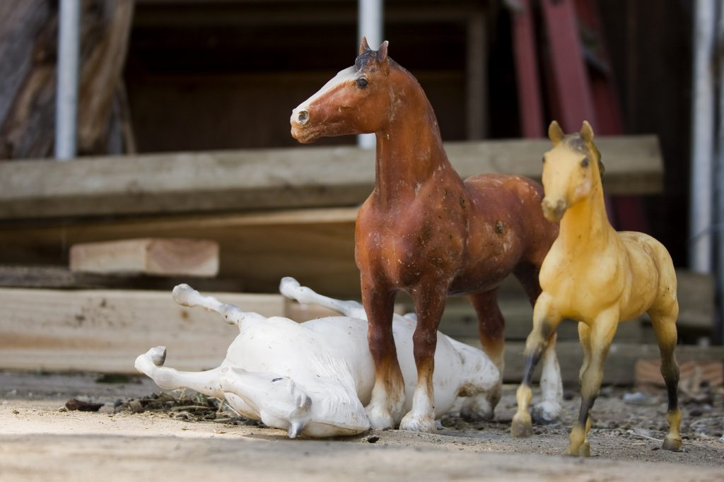 Toy horses sit on the platform where the riders mount and dismount the horses at the Back Bay Therapeutic Riding Club in Newport Beach. Games and activities are used during the therapy sessions. — Photo by Sara Hall ©